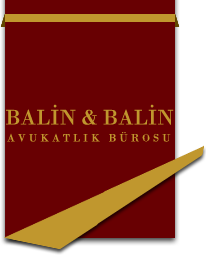 BALIN & BALIN Law Firm